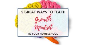 Growth mindset in homeschool